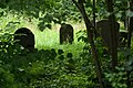 Jewish cemetery Pruszkow IMGP6835.jpg