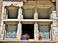 Jolies fenêtres.jpg