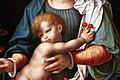 Joos van cleve, madonna col bambino, 1530-35 ca. 03 ciliegie.jpg