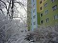 KALISZ W BIELI 08 - panoramio.jpg