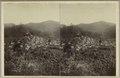 KITLV - 28601 - Kurkdjian, Ohannes - Soerabaja - Kampong in Tosari - circa 1900.tif