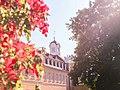 Karlsruhe Schloss - hinter sicht.jpg