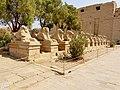Karnak Tempel Dromos 31.jpg