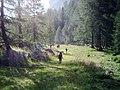 Karnische Alpen, Val Fleons.JPG