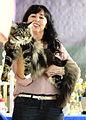 Katze Heimtierausstellung MTC Muenchen Preistraeger 2015-03-30 13-59-55 - 0023.JPG