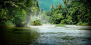 Kelani River - Kelani River, near Kitulgala