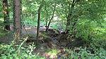 Keltersbaumbach Erosion.jpg