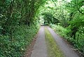 Kentish byway, East of Shoreham, Kent - geograph.org.uk - 940924.jpg