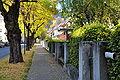 Klagenfurt Henselstrasse 21102008 67.jpg