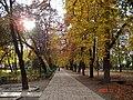 Kolozsvári sétatér ősszel.jpg