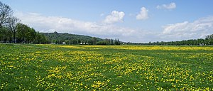 Krakow Blonia (Meadow) view to W,Krakow,Poland.jpg