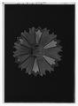 Kraschan, 1 kl. av koreanska orden De åtta elementen - Livrustkammaren - 1504-negative.tif