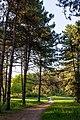 Krasnodar Dendrarium - panoramio.jpg