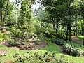 Kunming Botanical Garden - DSC02798.JPG