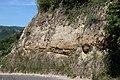 Lösswand Geologischer Rundwanderweg Lorch Rheingau.jpg
