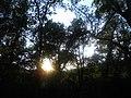 LA VALL DE SANT DANIEL (GIRONA) - panoramio (1).jpg