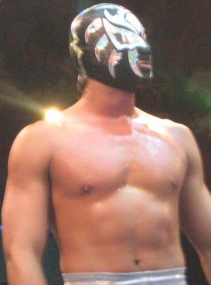 CMLL Torneo Nacional de Parejas Increibles (2013) - La Sombra (along with Volador Jr.) won the 2013 tournament
