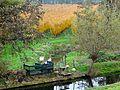 Laagstamboomgaard2 nabij Wijdenes.jpg