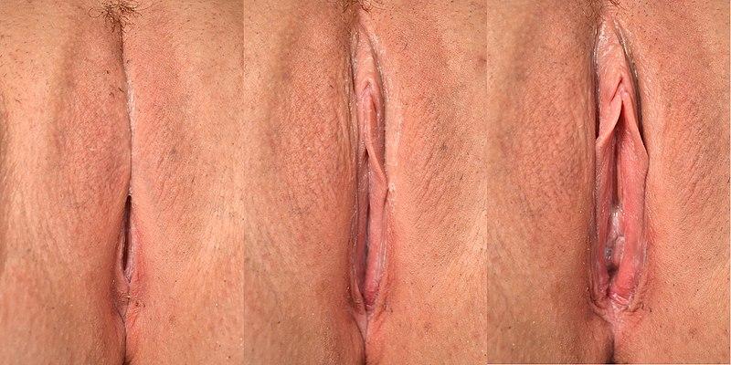 Mobius strip cut in half