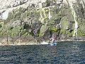 Landing on Boreray - geograph.org.uk - 1439951.jpg