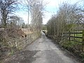 Lane running parallel to railway in direction of (Holm Lane) B5035 - geograph.org.uk - 726611.jpg