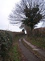 Lane to Dodd's Mill - geograph.org.uk - 101453.jpg