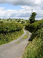Lane to Hendre - geograph.org.uk - 490669.jpg