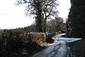 Lane to Trusham at junction with forestry road - geograph.org.uk - 1651556.jpg