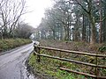Lane to Westcombe Hill - geograph.org.uk - 1723042.jpg