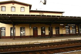 Laskowice, Kuyavian-Pomeranian Voivodeship Village in Kuyavian-Pomeranian Voivodeship, Poland