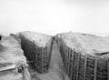 Laufgräben im Werk Les Planchettes auf dem Mont Vully - CH-BAR - 3241874.tif