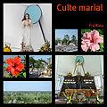 Le culte Marial à Tra Kieu (4411544893).jpg
