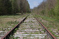 Ligne de Bourron-Marlotte à Malesherbes - 2013-04-21 - IMG 9339.jpg