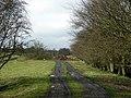 Line of Disused Railway Near Lodge Farm - geograph.org.uk - 147243.jpg