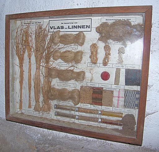 Linum usitatissimum flax products, vlasproducten