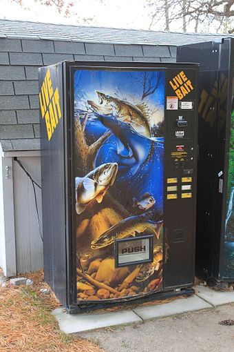 A live bait vending machine Live bait vending machine Brighton Recreation Area.JPG