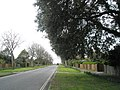 Looking southwards down Staunton Avenue - geograph.org.uk - 742793.jpg