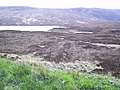 Looking towards Loch a Ghriama - geograph.org.uk - 172606.jpg