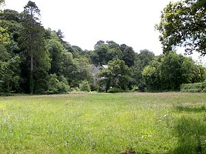 Newnham Park - Setting of Loughtor Mill, viewed from within the Newnham Park parkland