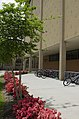 Louisiana State University, Baton Rouge, Louisana - panoramio (59).jpg