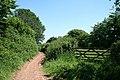 Loxbeare, bridleway - geograph.org.uk - 187653.jpg