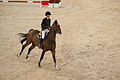 Luciana Diniz & Lennox 180 - 2013 Longines Global Champions Tour.jpg