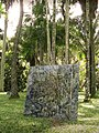 Lucio Salvatore, Jardim Botanico (2008) 4.jpg