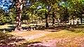 Ludington, MI 49431, USA - panoramio (4).jpg