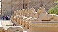 Luxor Karnak-Tempel 2016-03-21 Widder-Sphinx-Allee 01.jpg