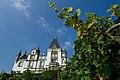Luzern Meggen Schloss Meggenhorn vines.jpg