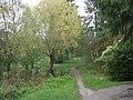 Mähe - panoramio - Aulo Aasmaa (19).jpg