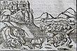 Smok Wawelski. Dalla Cosmographia universalis di Sebastian Münster, 1544