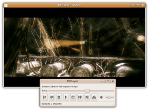 MPlayer on Linux using the gMplayer front-end