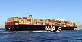 MSC Oscar (ship, 2014) 003.jpg